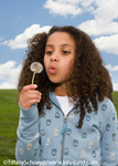 Young mixed race girl blowing on a dandelion flower. Green grass and blue cloudy sky.